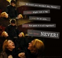 fred-fred-and-george-george-harry-potter-weasley-Favim.com-76237.jpg