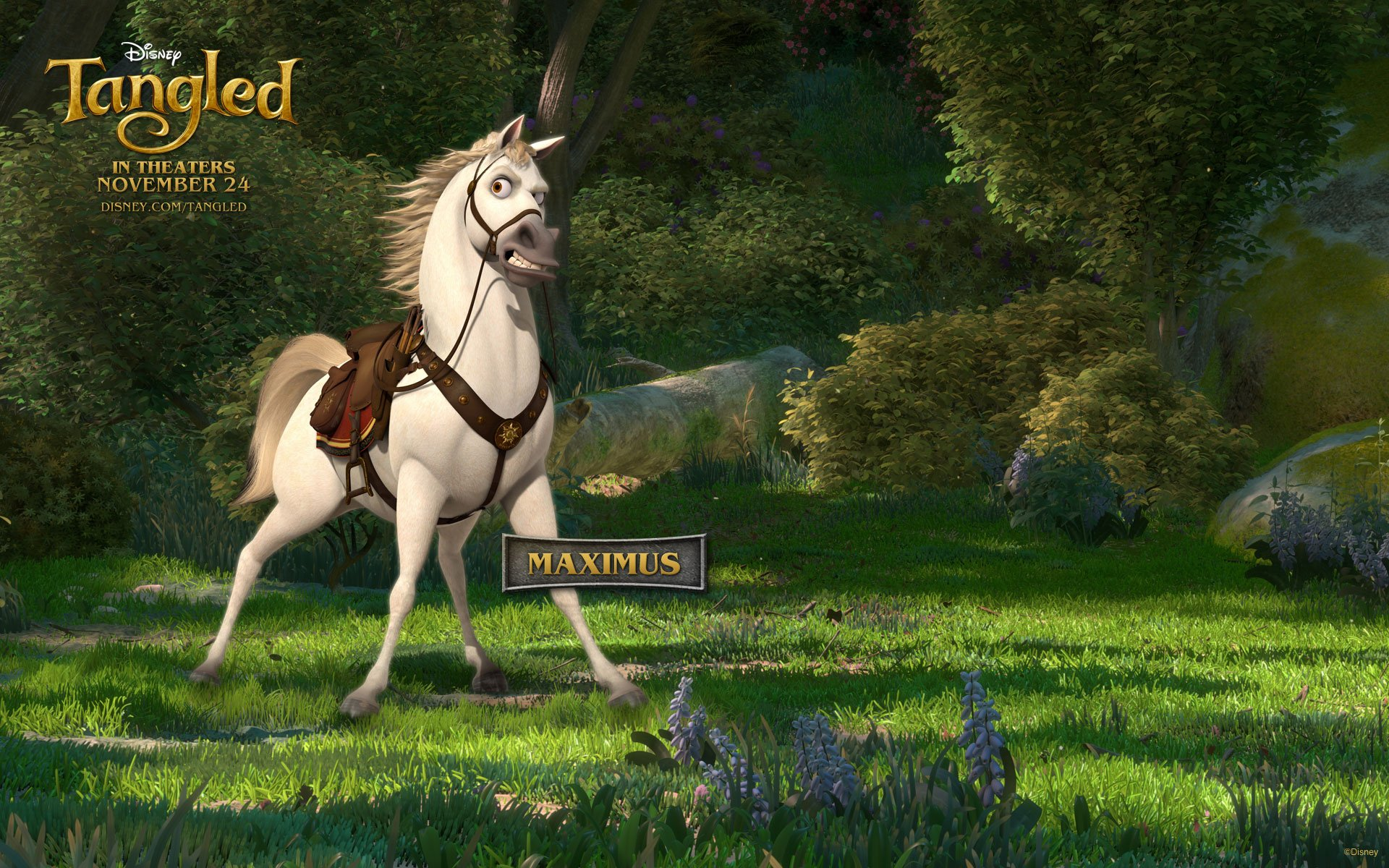 tangled_wallpaper_5_1920x1200.jpg