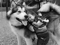 cute_kids_and_animals_10.jpg